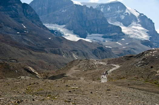 The trail to the Athabasca Glacier