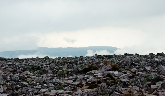 Fog at the summit of Gros Morne